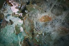 Les paniers contenant le crabe frais ont attrapé par des pêcheurs, en vente Photo libre de droits