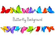 Les papillons encadrent avec l'espace de copie Photo stock