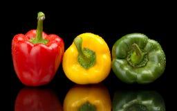 Les paprikas humides rouges, verts, jaunes sur le noir avec de l'eau se laisse tomber Photo libre de droits