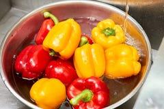 Les paprikas rouges et jaunes dans un bassin de l'eau, se ferment  Photos stock