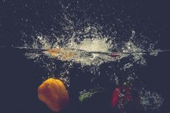 Les paprikas rouges jaunes verts se laissent tomber dans l'eau avec l'éclaboussure Images stock