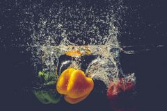 Les paprikas rouges jaunes verts se laissent tomber dans l'eau avec l'éclaboussure Photos libres de droits