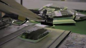 Les paquets avec des concombres se déplacent le long de la bande de conveyeur dans la boutique de production clips vidéos