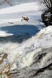 Les parachutistes ont croisé l'eau Images libres de droits