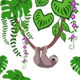 Les paresses dans le modèle sans couture de jungle tropicale, paresses répètent le modèle pour la conception de textile, la copie illustration stock