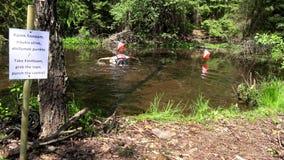 Les participants de concurrence de course d'orientation au point de contrôle sous le marais arrosent banque de vidéos