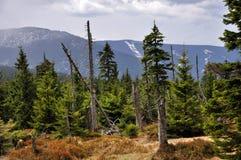 Les parties supérieures des montagnes géantes Krkonose Photographie stock libre de droits