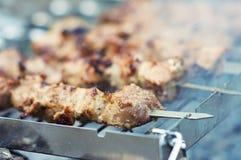 Les parts juteuses de la viande préparent sur l'incendie photographie stock libre de droits