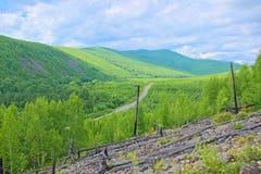 Les passages de route entre les collines vertes photo libre de droits