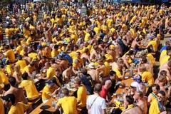 Les passionés du football ont la bière Photo stock