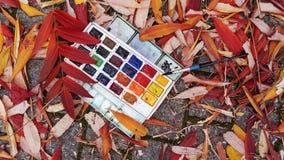 Les peintures se trouvent au sol dans des feuilles colorées photos stock