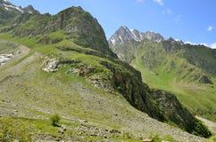 Les pentes vertes des montagnes Photos stock