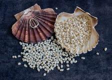 Les perles et un anneau se situent dans une coquille exotique Photo libre de droits