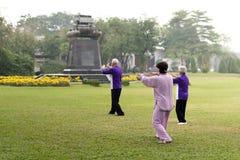 Les personnes âgées faisant des exercices de chi de tai Image stock