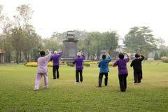 Les personnes âgées faisant des exercices de chi de tai Photos libres de droits