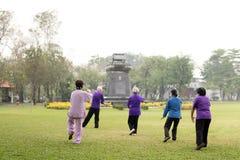 Les personnes âgées faisant des exercices de chi de tai Images stock