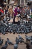 Les personnes âgées ont masqué les pigeons de alimentation de femme Photographie stock