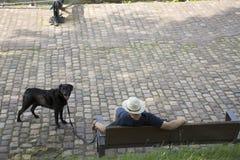 Les personnes allemandes apportent le chien noir se reposent sur le banc et le repos en parc public Image stock