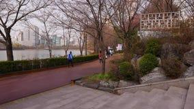 Les personnes coréennes marchent autour du parc de Jamsil le long du lac Songpa clips vidéos
