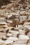 Les personnes locales travaillant au sel s'accumulent, Maras, Pérou Photos stock