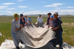 Les personnes mongoles produisent le feutre dans Harhorin, Mongolie photographie stock