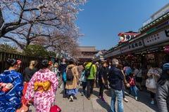 Les personnes non identifi?es visitent le temple de Sensoji avec des fleurs de cerisier dans Asakusa, Tokyo, Japon photographie stock