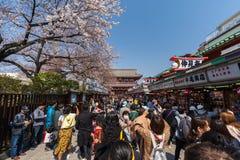 Les personnes non identifi?es visitent le temple de Sensoji avec des fleurs de cerisier dans Asakusa, Tokyo, Japon image stock