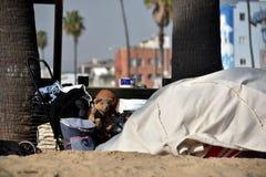 Les personnes sans abri autoguident sur la plage de Venise Photos libres de droits
