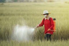 Les pesticides est néfaste à la santé image libre de droits