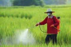 Les pesticides est néfaste à la santé photographie stock libre de droits