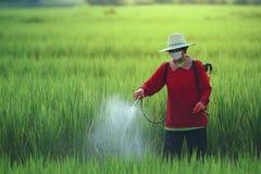 Les pesticides est néfaste à la santé image stock