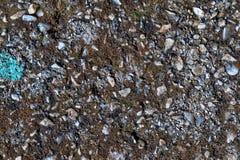 Les petites roches avec le moule et la peinture bleue donnent à la photo une consistance rugueuse Images stock
