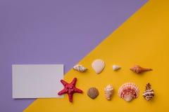Les petits coquillages s'approchent de la carte Photo libre de droits