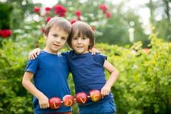 Les petits enfants mignons, frères de garçon, tenant un signe d'amour, ont fait le franc Photos libres de droits