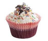 Les petits gâteaux avec des puces de chocolat et colorés arrose Photographie stock