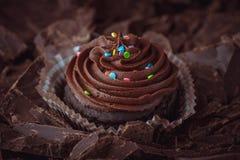 Les petits gâteaux de chocolat avec coloré arrose Photographie stock
