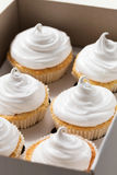 Les petits gâteaux de vanille avec de la crème blanche, se ferment  Image libre de droits