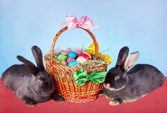 Les petits lapins sont près d'un beau panier avec des oeufs de pâques Image libre de droits