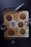 Les petits pâtés préparés ou les côtelettes de boeuf haché sur un plateau de cuisson avec volent des pièces de broyeur, fond fonc photos libres de droits