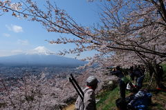 les photographes prennent une photo à la pagoda de Chureito avec le ciel bleu photo libre de droits