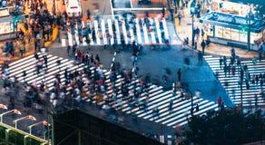 Les piétons croisent le passage piéton de bousculade de Shibuya, à Tokyo, le Japon photographie stock libre de droits