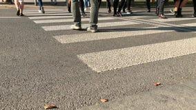 Les piétons traversent plus de la route par le passage clouté dans la rue de ville banque de vidéos