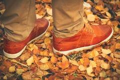 Les pieds équipent la marche sur des feuilles de chute extérieures Image libre de droits