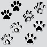 Les pieds animaux de voie de patte de chat impriment des icônes avec l'ombre. Photos stock