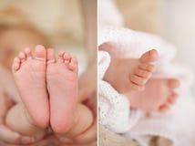 Les pieds d'un bébé nouveau-né dans la mère adoucissent des mains Photographie stock libre de droits