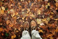 Les pieds de jaune de chaussures part de l'automne Photographie stock libre de droits