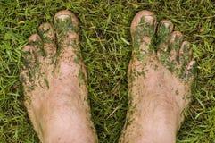 Les pieds de la tondeuse à gazon Photo libre de droits