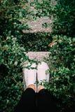 Les pieds de mode regardent dans des espadrilles propres blanches en parc, summertim Images stock