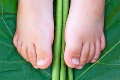 Les pieds des enfants sur la lame tropicale verte Photo stock