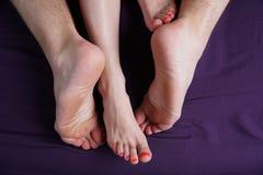 Les pieds femelles et masculins se trouvent sur une feuille violette Les amants ont le sexe Photographie stock